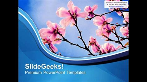 theme  spring beauty  nature powerpoint templates