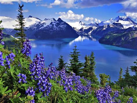 Hd Wallpaper Landscape Nature Lake Mountains Flowers ...