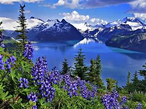 Hd, Wallpaper, Landscape, Nature, Lake, Mountains, Flowers, 3840x2160, Hd, Wallpaper, 70514, Wallpapers13, Com