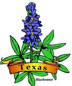 Texas Bluebonnet Clip Art