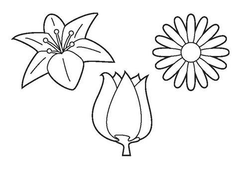 Kleurplaat Narcis by Kleurplaat Bloemen Moederdag En Vaderdag Bloem