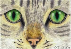 Realistic Pencil Cat Eyes Drawings