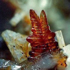 calcium minerals images minerals minerals