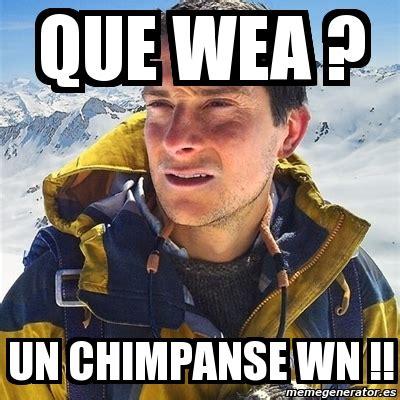 Bear Grylls Blood Meme - meme bear grylls que wea un chimpanse wn 3962330