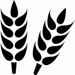Wheat grain close up Icons | Free Download