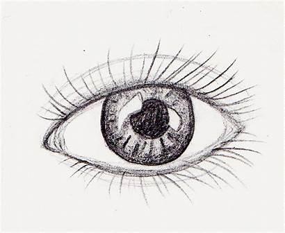 Eye Blinking Animation Pencil Dragon Left Animated