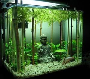 Aquarium Deko Ideen : d co pour votre aquarium 17 id es laissez vous inspirer ~ Lizthompson.info Haus und Dekorationen