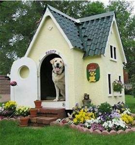 Awesome dog house cute stuff pinterest awesome dogs for Best little dog house