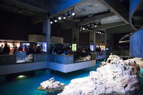New England Aquarium Events