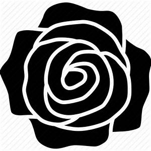 Flower, romance, romantic, rosa, rose, top, valentine's ...