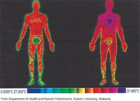 normal human body temperature   range