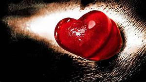 Valentine Day Love Heart HD Wallpaper of Love ...