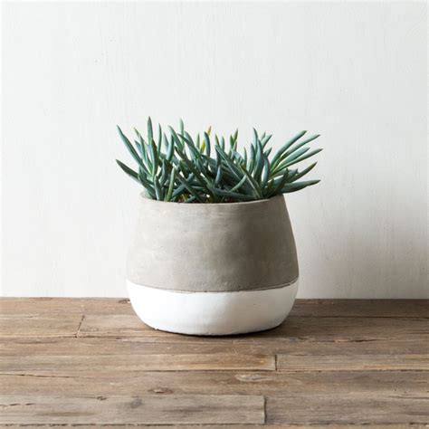 cement pot magnolia market chip joanna gaines