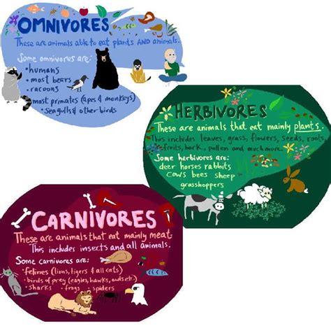 17 Best Carnivoresherbivores Images On Pinterest