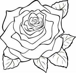 eletragesi: Easy Rose Drawing Outline Images