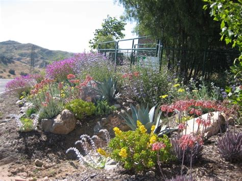 landscape designer orange county landscape designer in orange county photo gallery