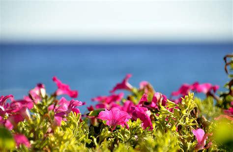 vacanze varigotti varigotti viaggi vacanze e turismo turisti per caso