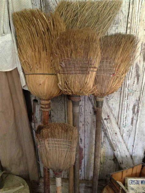 Primitive Witches Broom