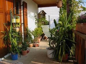 gestaltungsideen fur balkon und dachterrasse mein With französischer balkon mit yucca für den garten