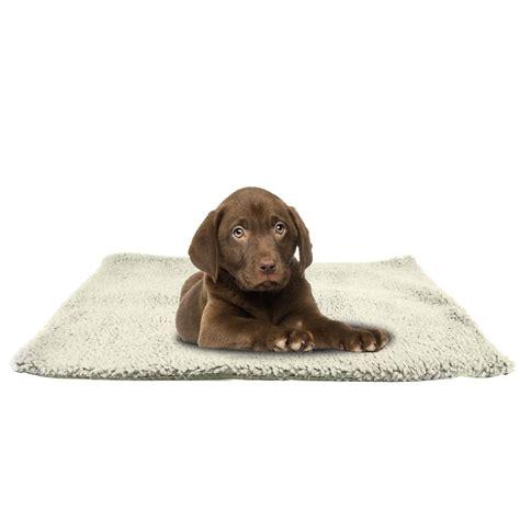 rugs for dogs luxury pet cat rug mat 46cmx64cm self heating warm