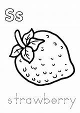 Strawberry Coloring Pages Worksheets Strawberries Fruits Memory Printable Preschoolers Parentune Toddlers Learning sketch template