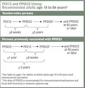 Adult Pneumonia Vaccine Guidelines