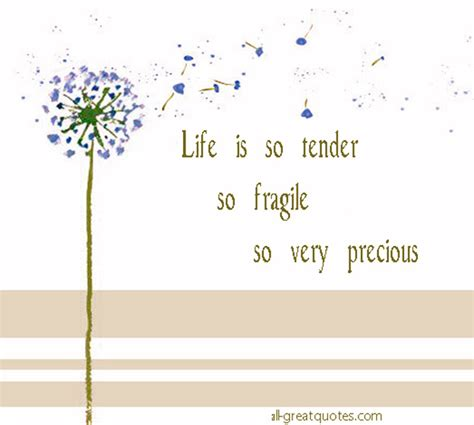 Life Is So Fragile Quotes