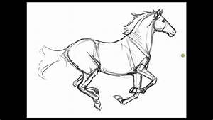 Ref-less Horse Sketches