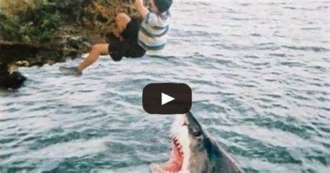 fails fishing funny fish