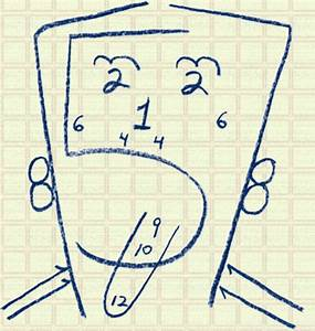 An Alternative To The Cranial Nerves Drawing  Used This