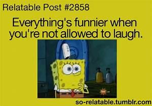 gif LOL funny gifs humor spongebob spongebob squarepants ...