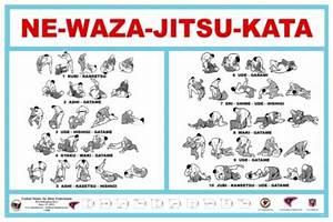Newaza Poster