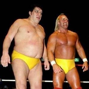 Hulk Hogan Enemies - Comic Vine