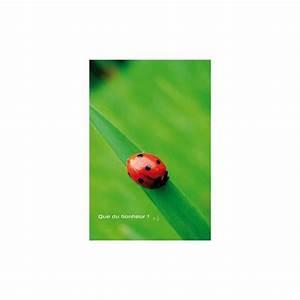 Cado Carte Que Du Bonheur : carte artistes divers la collection souris la vie que ~ Dailycaller-alerts.com Idées de Décoration