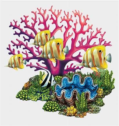 Coral Reef Clipart Mosaic Sea Choice Tropical