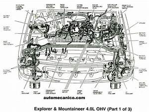 1999 Kia Sephia Fuse Box Diagram  Kia  Auto Wiring Diagram