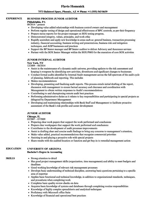 12763 professional resume template exles energy auditor resume exles sle engineer exles