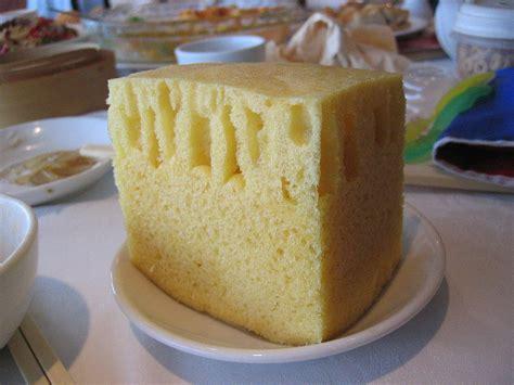 Touching A Sponge!