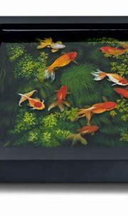 20 HyperRealistic Three Dimensional Animal Paintings ...