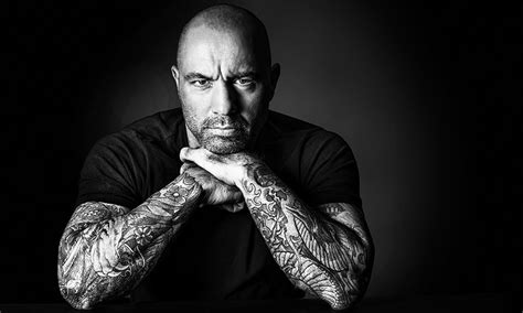black and white arm chair a message to joe rogan about addiction and use