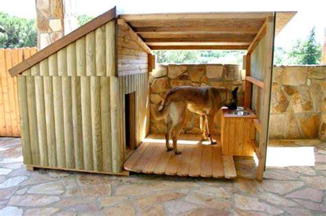 easy diy dog house plans build season