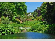 Trebah gardens Bassets Acre