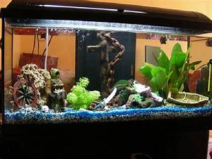Aquarium Deko Ideen : d coration aquarium pirate images frompo ~ Lizthompson.info Haus und Dekorationen