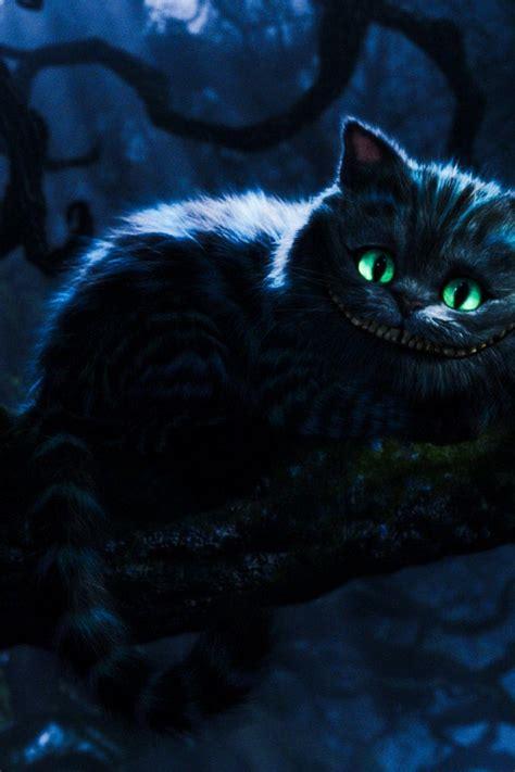 Cheshire Cat Wallpaper Iphone Wallpapersafari