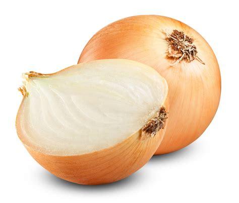 oignon blanc cuisine les 10 puissants bienfaits et vertus des oignons sur votre