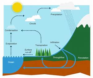 Water Cycle  The Process That Provides All The Water You Use
