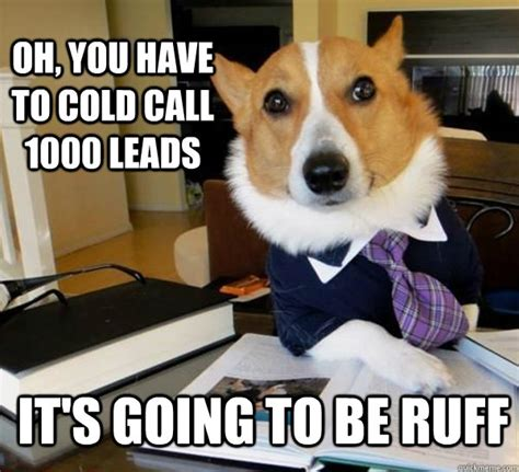 Cold Calling Meme - oh you have to cold call 1000 leads it s going to be ruff lawyer dog quickmeme