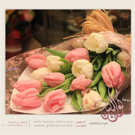 canapé kaola باقة ورد توليب tulip flower i