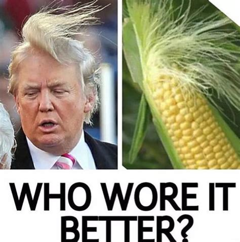 Who Wore It Better Meme - the funniest donald trump memes from across the internet wow amazing