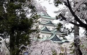 Sakura Japan Wallpapers Full HD Free Download